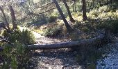 Randonnée Marche MARSEILLE - 2012-02-26 - 16h32m22 - Photo 3