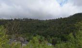 Trail Walk Bouillon - rochehaut - sentier crêtes frahan- roche des corbeaux - Photo 2
