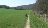 Trail Walk Dinant - Journée au départ du refuge CAB de Freyr - Photo 5