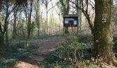 Trail Walk Dinant - Journée au départ du refuge CAB de Freyr - Photo 14