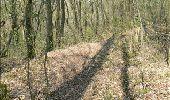 Trail Walk Dinant - Journée au départ du refuge CAB de Freyr - Photo 16