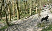 Trail Walk Dinant - Journée au départ du refuge CAB de Freyr - Photo 2