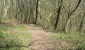 Trail Walk Dinant - Journée au départ du refuge CAB de Freyr - Photo 15
