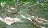 Randonnée Marche Gesves - GESVES -Mozet- N°06- Biodiversité - Photo 5