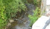 Randonnée Marche Gesves - GESVES -Mozet- N°06- Biodiversité - Photo 14