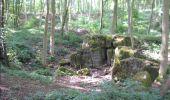 Randonnée Marche Gesves - GESVES -Mozet- N°06- Biodiversité - Photo 23