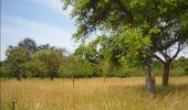Randonnée Marche Gesves - GESVES -Mozet- N°06- Biodiversité - Photo 11