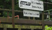 Trail Walk Gesves - GESVES- Le Pré D'Amite- N°07- Bois  - Photo 24