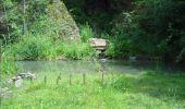 Trail Walk Gesves - GESVES- Le Pré D'Amite- N°07- Bois  - Photo 33