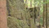 Trail Walk Gesves - GESVES- Le Pré D'Amite- N°07- Bois  - Photo 14