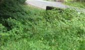 Trail Walk Gesves - GESVES- Le Pré D'Amite- N°07- Bois  - Photo 7