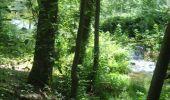 Trail Walk Gesves - GESVES- Le Pré D'Amite- N°07- Bois  - Photo 30