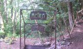 Trail Walk Gesves - GESVES- Le Pré D'Amite- N°07- Bois  - Photo 26