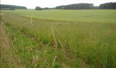 Trail Walk Gesves - GESVES- Haltinne- N°09- Patrimoine - Photo 10