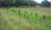 Trail Walk Gesves - GESVES- Haltinne- N°09- Patrimoine - Photo 12
