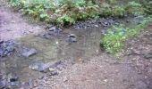 Randonnée Marche Gesves - OHEY- REPPE- N°11-Biodiversité  - Photo 12