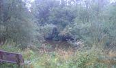 Randonnée Marche Gesves - OHEY- REPPE- N°11-Biodiversité  - Photo 13