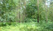 Trail Walk Gesves - OHEY- REPPE- N°11-Biodiversité  - Photo 11