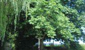 Trail Walk Ohey - OHEY- Evelette (Libois)- N° 13 Eau  - Photo 33