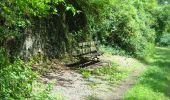 Trail Walk Ohey - OHEY- Evelette (Libois)- N° 13 Eau  - Photo 16