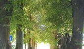 Trail Walk Ohey - OHEY- Evelette (Libois)- N° 13 Eau  - Photo 20