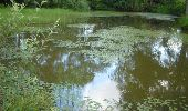 Trail Walk Ohey - OHEY- Evelette (Libois)- N° 13 Eau  - Photo 34