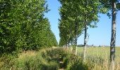 Trail Walk Ohey - OHEY- Goesnes- N°15- Paysage condruzien  - Photo 14