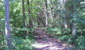 Trail Walk Ohey - OHEY- Goesnes- N°15- Paysage condruzien  - Photo 9