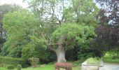 Trail Walk Ohey - OHEY- Goesnes- N°15- Paysage condruzien  - Photo 15