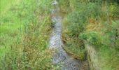 Trail Cycle Ohey - OHEY- Balade cyclo 3 - Photo 4