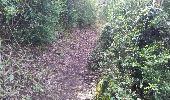 Randonnée V.T.T. HIERES-SUR-AMBY - hyeres sur amby optevoz  - Photo 6