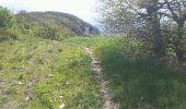 Randonnée V.T.T. HIERES-SUR-AMBY - hyeres sur amby optevoz  - Photo 2