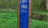 Randonnée Marche VILLERS-COTTERETS - en forêt de Retz_34_les salamandres de François 1er - Photo 3