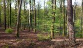 Randonnée Marche VILLERS-COTTERETS - en forêt de Retz_34_les salamandres de François 1er - Photo 5