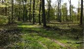 Randonnée Marche VILLERS-COTTERETS - en forêt de Retz_34_les salamandres de François 1er - Photo 8