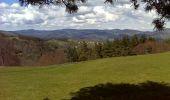 Randonnée Marche SAINT-JEURE-D'ANDAURE - En pays d'Andaure - Photo 6