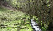 Randonnée Marche SAINT-JEURE-D'ANDAURE - En pays d'Andaure - Photo 4