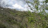 Randonnée Marche SAINT-JEURE-D'ANDAURE - En pays d'Andaure - Photo 3