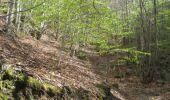 Randonnée Marche SAINT-JEURE-D'ANDAURE - En pays d'Andaure - Photo 2