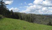 Randonnée Marche SAINT-JEURE-D'ANDAURE - En pays d'Andaure - Photo 1