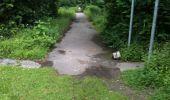 Trail Walk Yvoir - Boucle Godinne Mont chemins publics - Photo 28
