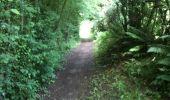 Trail Walk Yvoir - Boucle Godinne Mont chemins publics - Photo 26