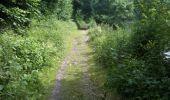 Trail Walk Yvoir - Boucle Godinne Mont chemins publics - Photo 25