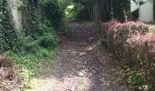 Trail Walk Yvoir - Boucle Godinne Mont chemins publics - Photo 24
