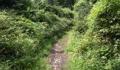 Trail Walk Yvoir - Boucle Godinne Mont chemins publics - Photo 23