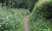 Trail Walk Yvoir - Boucle Godinne Mont chemins publics - Photo 22