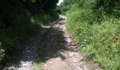 Trail Walk Yvoir - Boucle Godinne Mont chemins publics - Photo 21