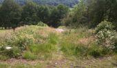 Trail Walk Yvoir - Boucle Godinne Mont chemins publics - Photo 17