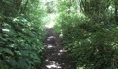 Trail Walk Yvoir - Boucle Godinne Mont chemins publics - Photo 16