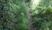 Trail Walk Yvoir - Boucle Godinne Mont chemins publics - Photo 15